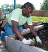 Roots of Success Users Profiled by the National Wildlife Federation's Campus EcologyProgram